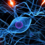 patologie neurodegenerative: immagine di sinapsi