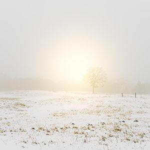 immagine di un gelido inverno che porterà a tanti decessi